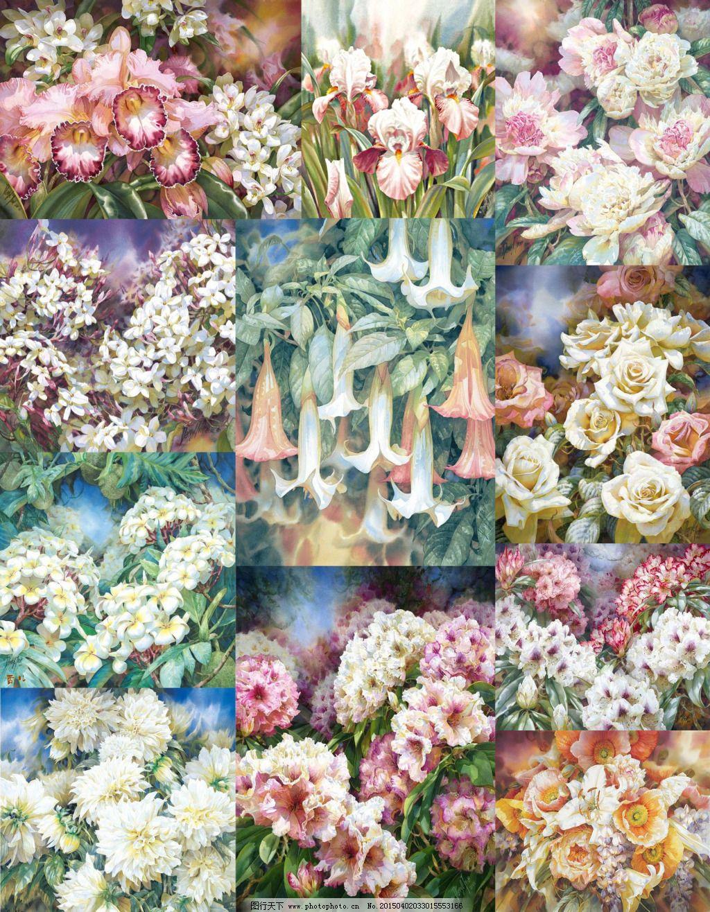 手绘花丛免费下载 psd分层素材 桂花 花丛 花卉 花卉素材 菊花 牵牛花