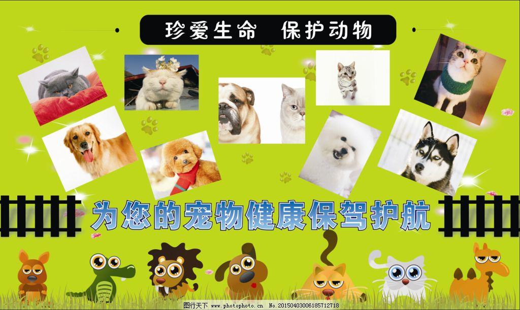 保护动物免费下载 保护动物