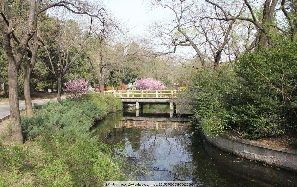 北京动物园河道图片