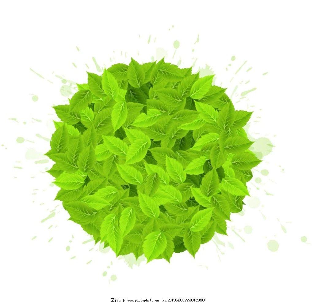 圆造型树叶图片图片