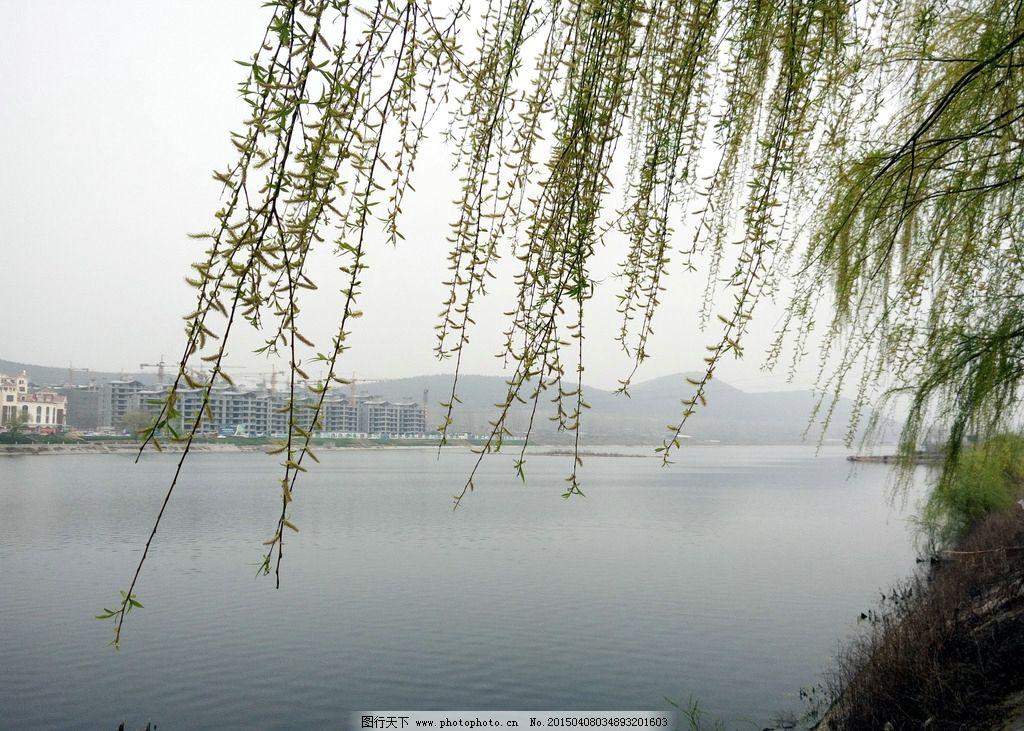 河岸风景图片