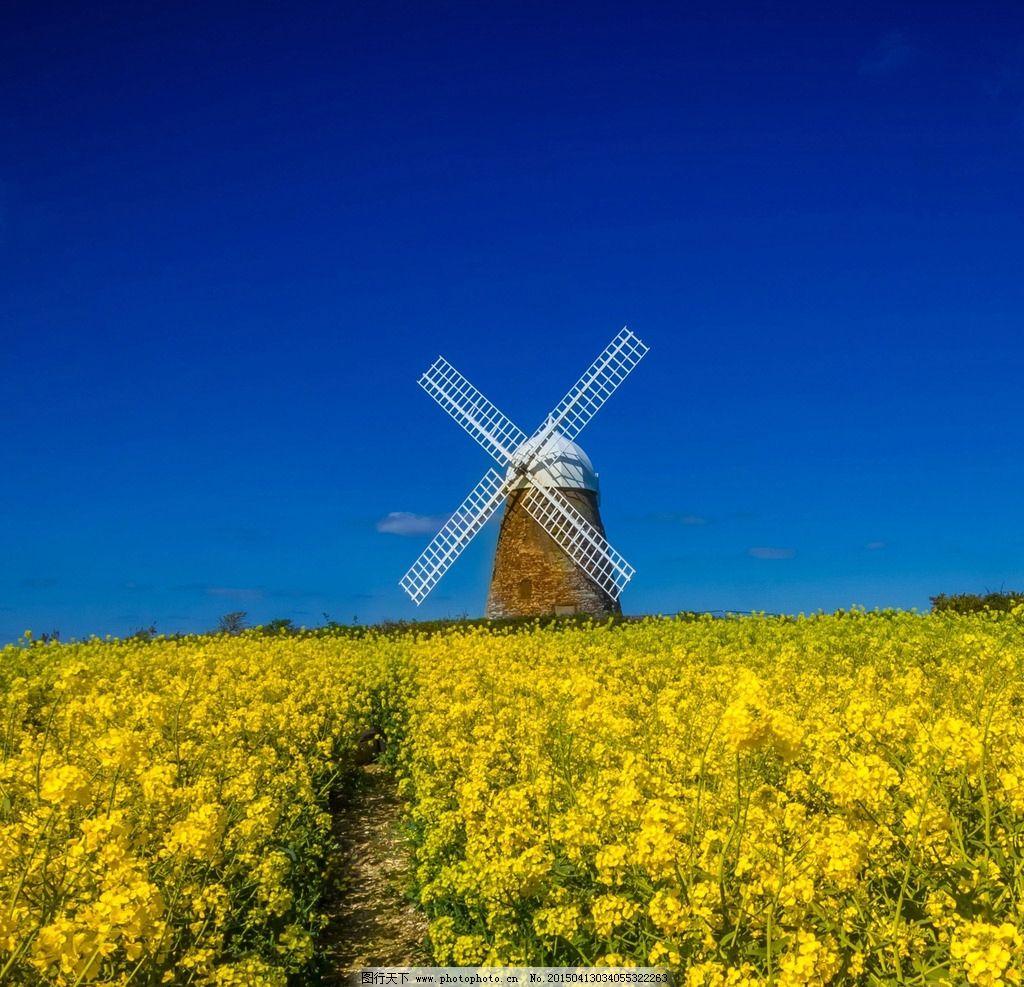 荷兰风车的做法图解