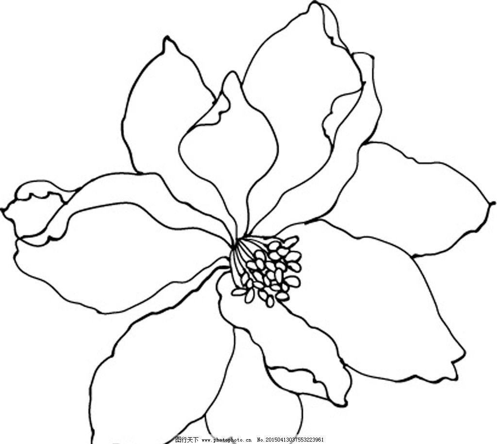 花朵笔手绘黑白画