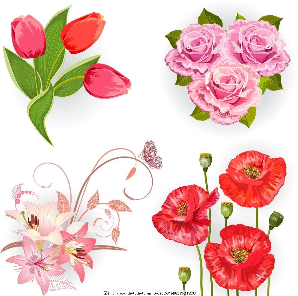 花朵 鲜花 花卉插图 绿叶 玫瑰花 郁金香 百合花 手绘 设计 矢量 ai