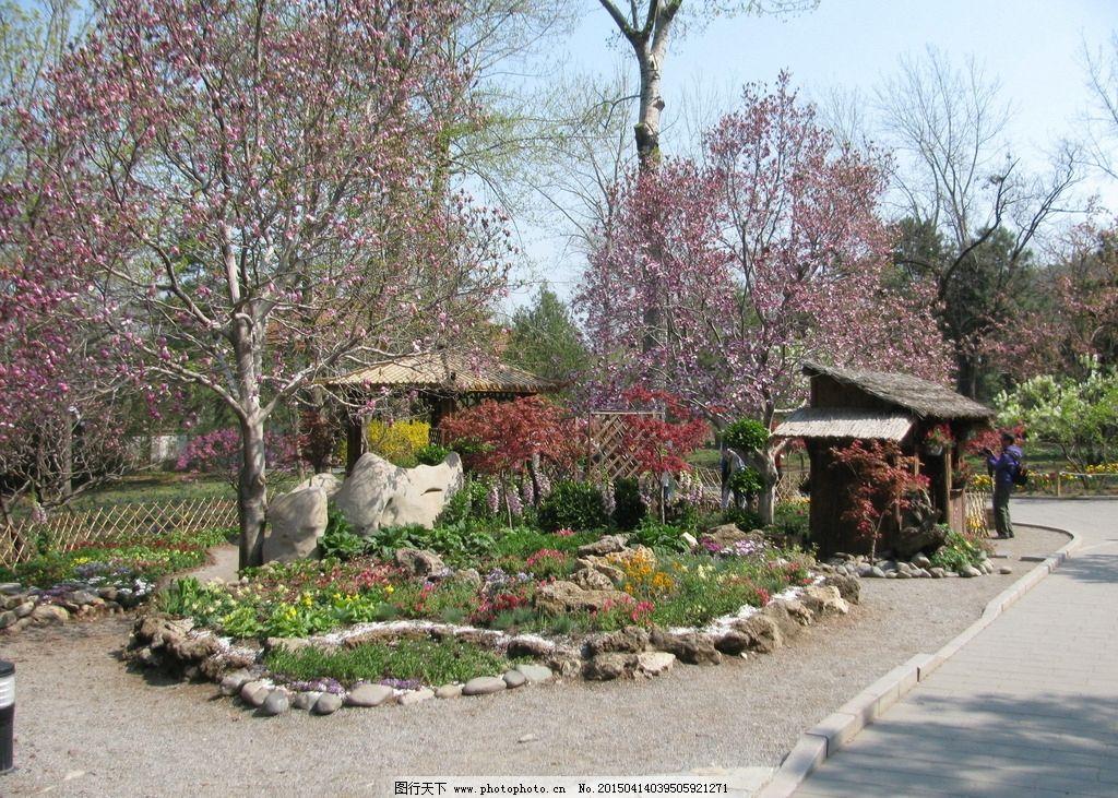 园林景观 绿化景观