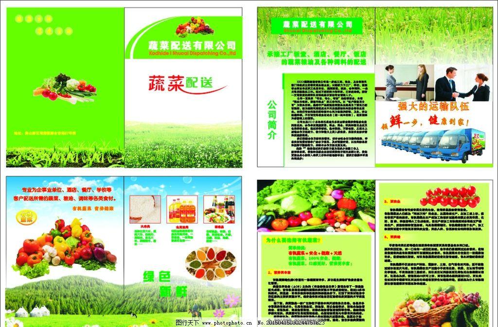 单页 彩页 蔬菜 配送 彩页模板 单页模板 设计 广告设计 dm宣传单 cdr