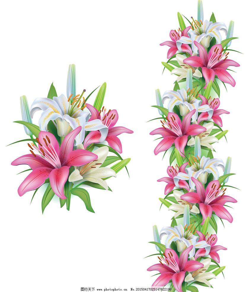 手绘花卉 花朵 鲜花 花卉插图
