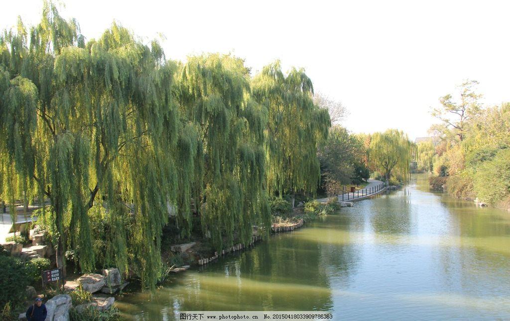 大明湖 风景区 蓝天 树林 美景 国内旅游 摄影 旅游摄影 国内旅游 72
