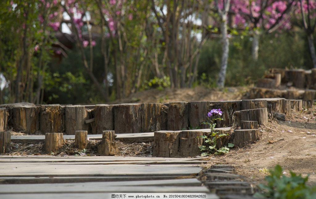 公园小径 木桩 台阶 地面 小路 道路 创意 踏春 自然风光摄影 摄影
