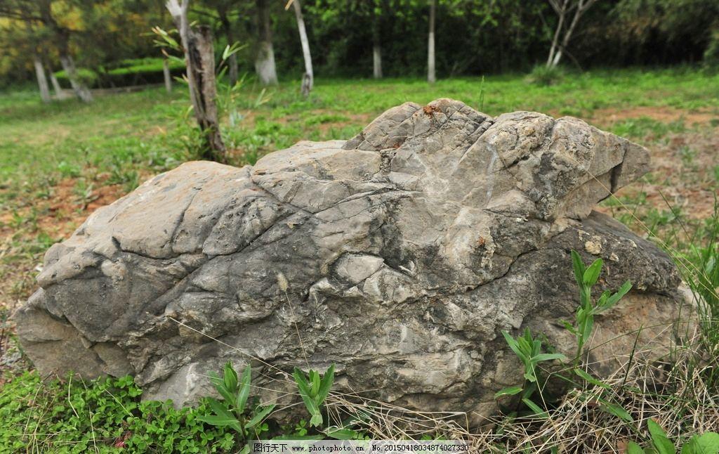 石头图片_自然风景_自然景观_图行天下图库