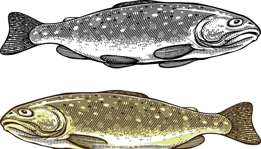矢量鱼 手绘鱼 生物世界 鱼类 动漫动画