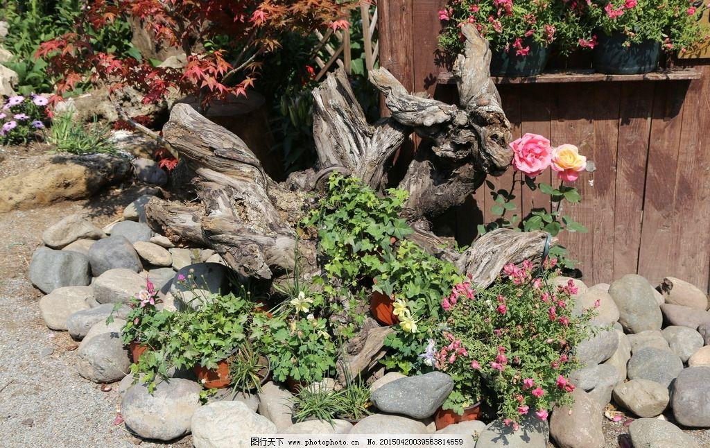 绿化景观 月季花 山石 木雕 造型 绿地 春天 花卉 树枝 自然景观