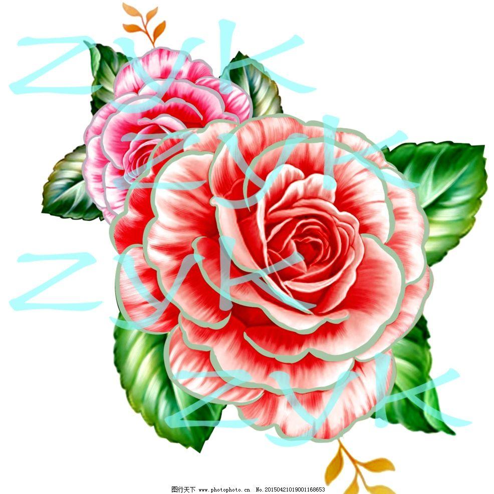 手绘 玫瑰 玫瑰花 玫瑰花朵