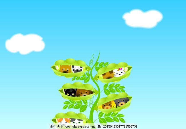 哪些植物或动物在夏天生长