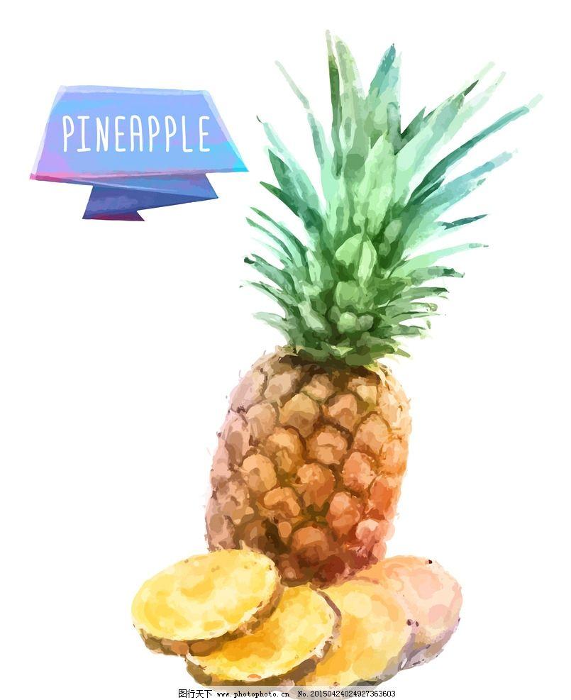 菠萝 手绘水果 水彩水果 矢量