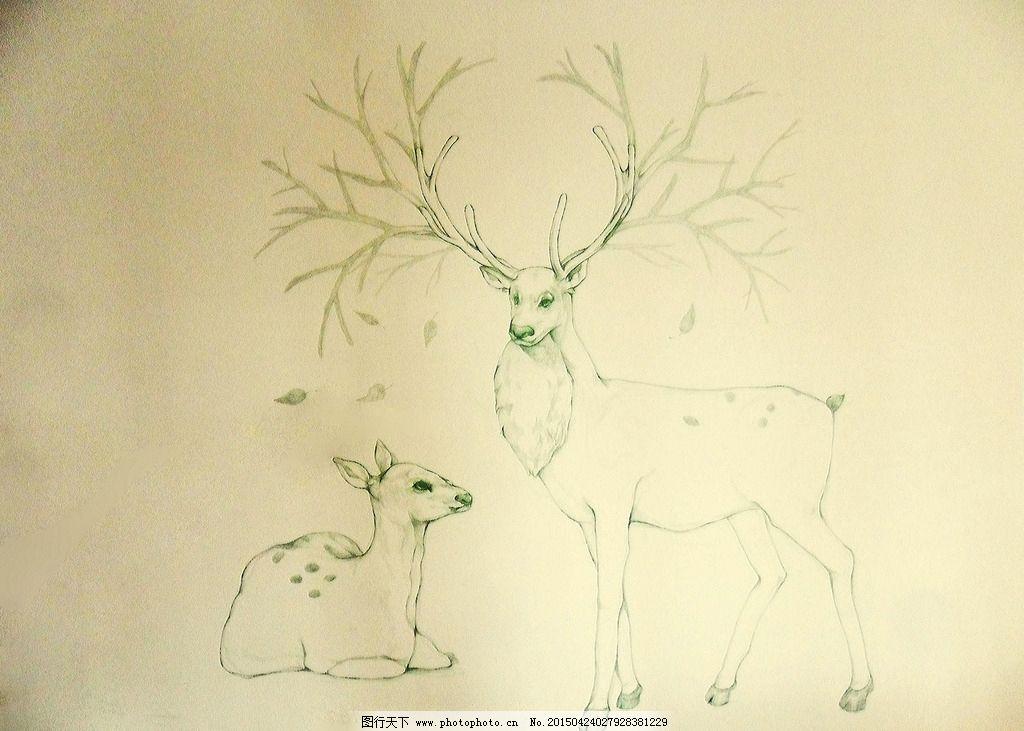 墙绘 手绘 麋鹿 森系 文艺 家居 室内 设计 环境设计 室内设计 96dpi