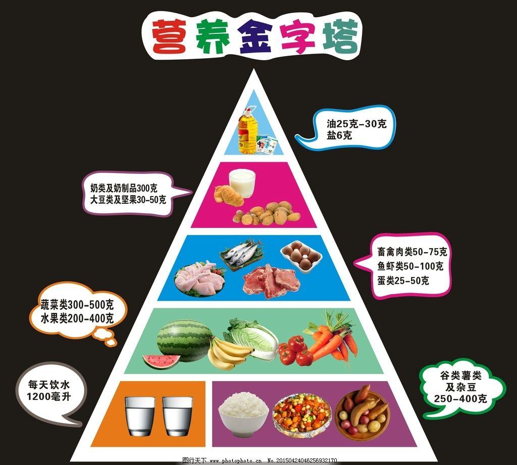 营养 金字塔 营养金字塔