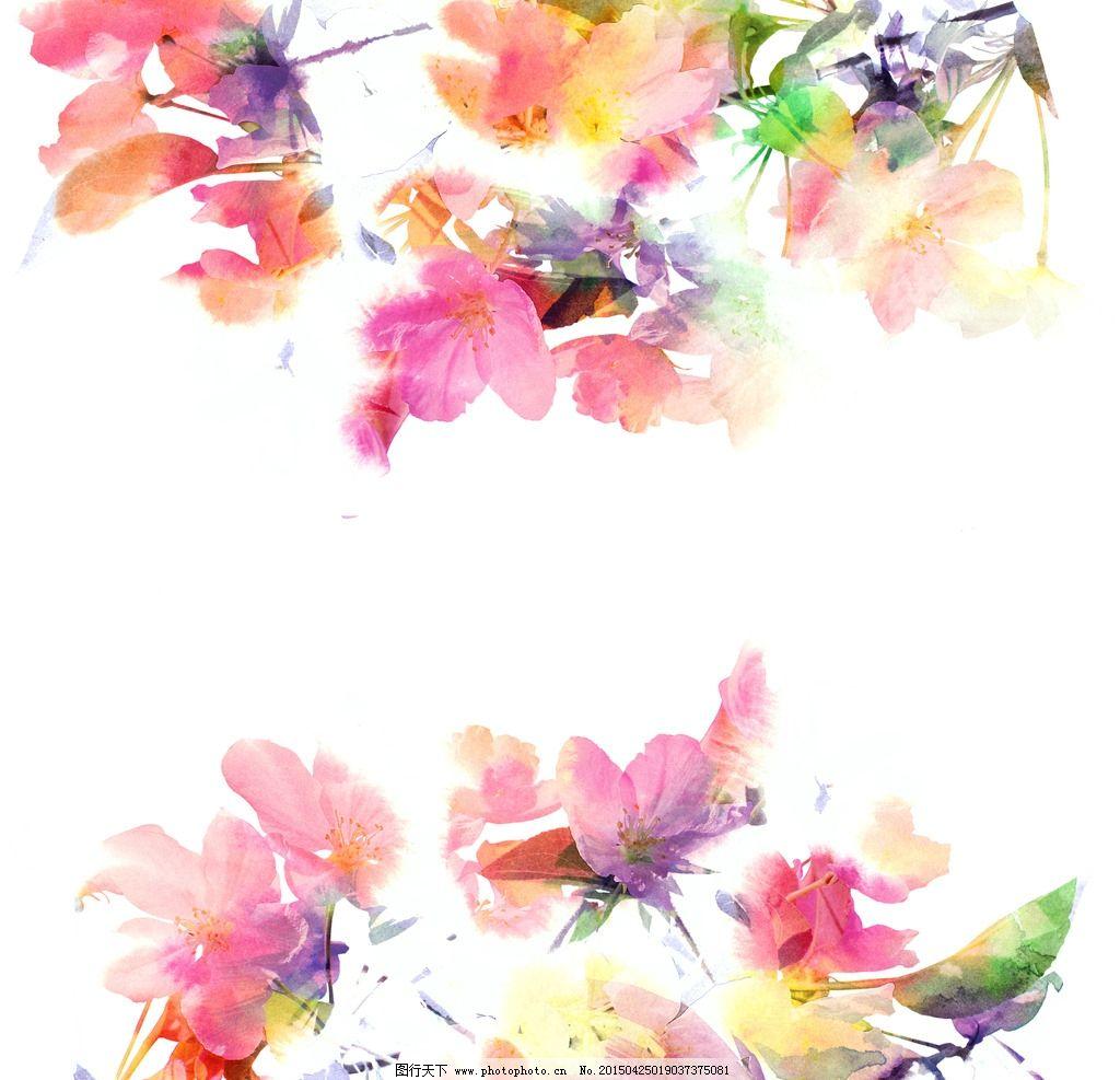 手绘 水彩 花卉