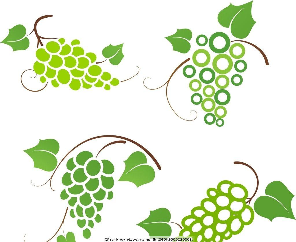 葡萄素材 青葡萄 青葡萄素材 矢量葡萄素材 葡萄藤 葡萄 蔓藤 绿叶