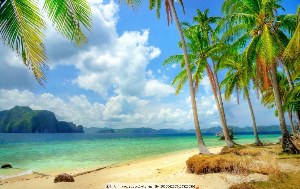 夏天 海滩 沙滩 大海 蓝天 白云 椰树 摄影