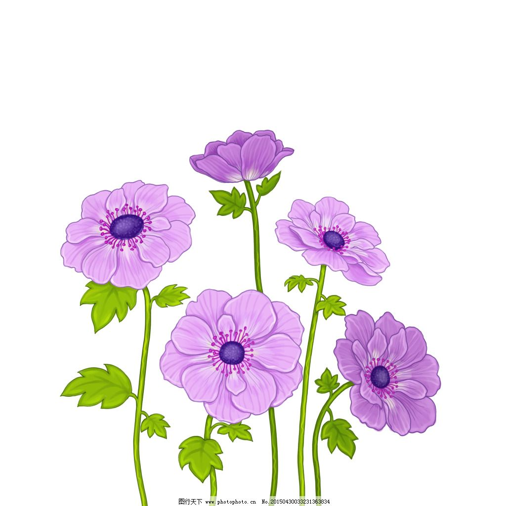 花漂亮手绘清新