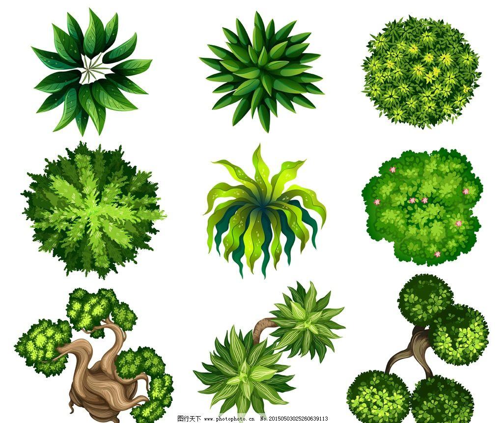 树木 绿叶 盆景 绿植 树叶 绿树 手绘树木 树木贴图 植物 矢量