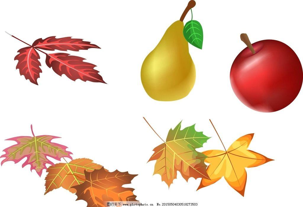 矢量枫叶 水果 卡通素材 可爱 手绘素材 儿童素材 幼儿园素材
