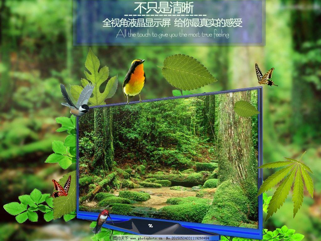 淘宝液晶电视海报 森林 淘宝透视 高清 自然 淘宝界面设计 淘宝装修