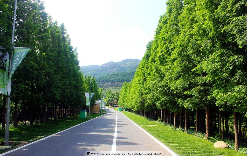 青岛世园会图片_国内旅游