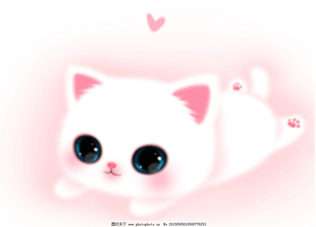 白色猫咪 可爱