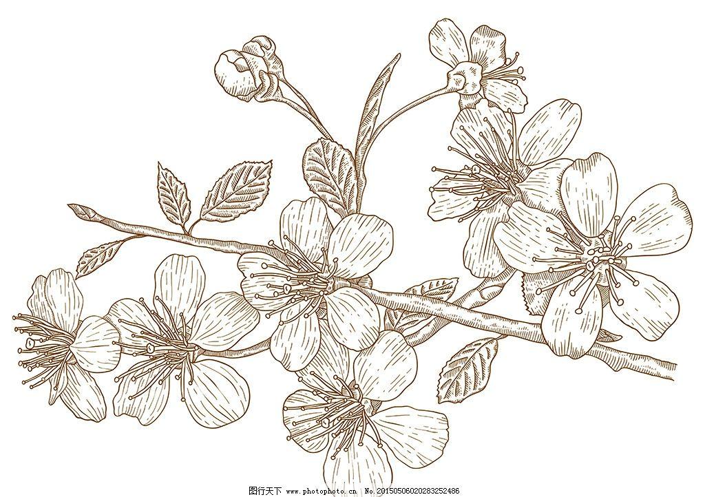 手绘线条植物