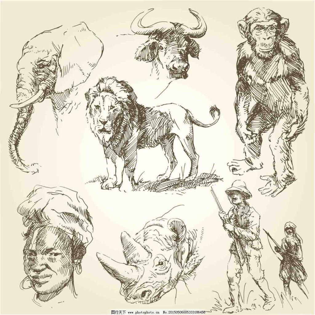 手绘动物野生动物手绘素描美术绘画