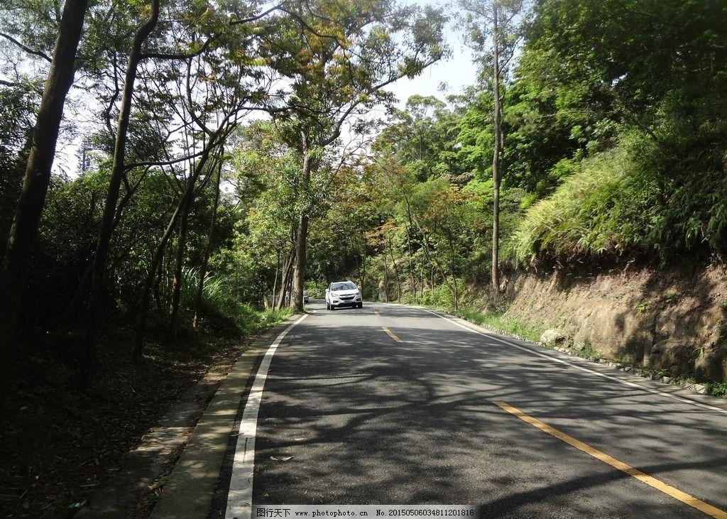 小路 汽车 森林 园林 风景 树木 树叶 马路 摄影