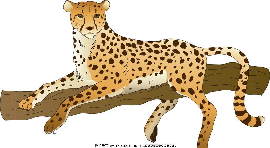 豹子手绘图片