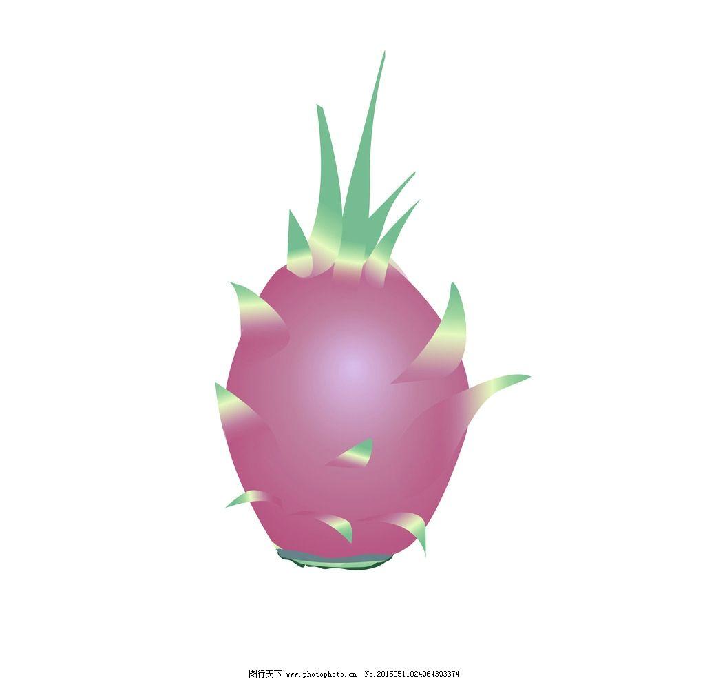 火龙果 矢量图 设计图图片