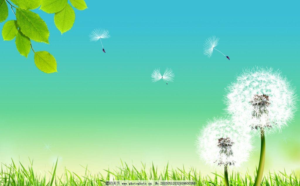 草地 大自然图片 动感背景 动感线条 风吹 风景图片 绿草 绿叶 蒲公英