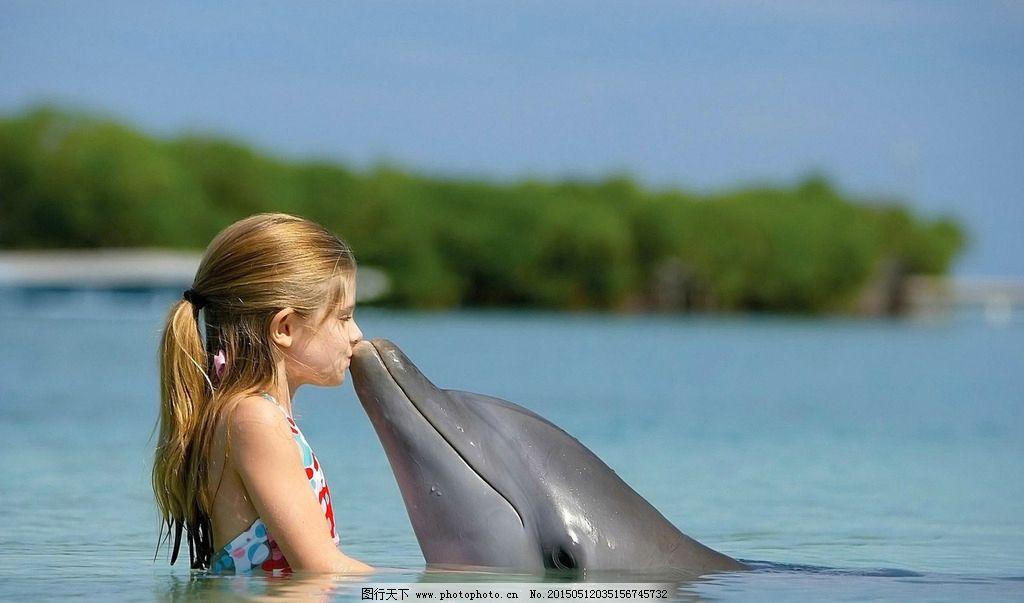 海豚表演 萌 萌海豚 大海 水面 海面 海洋 海洋生物 水生哺乳动物 水