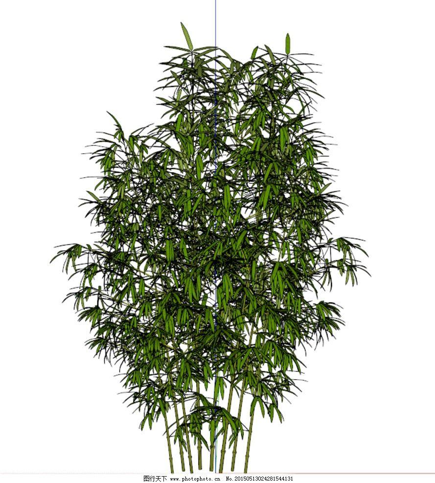 竹子模型图片