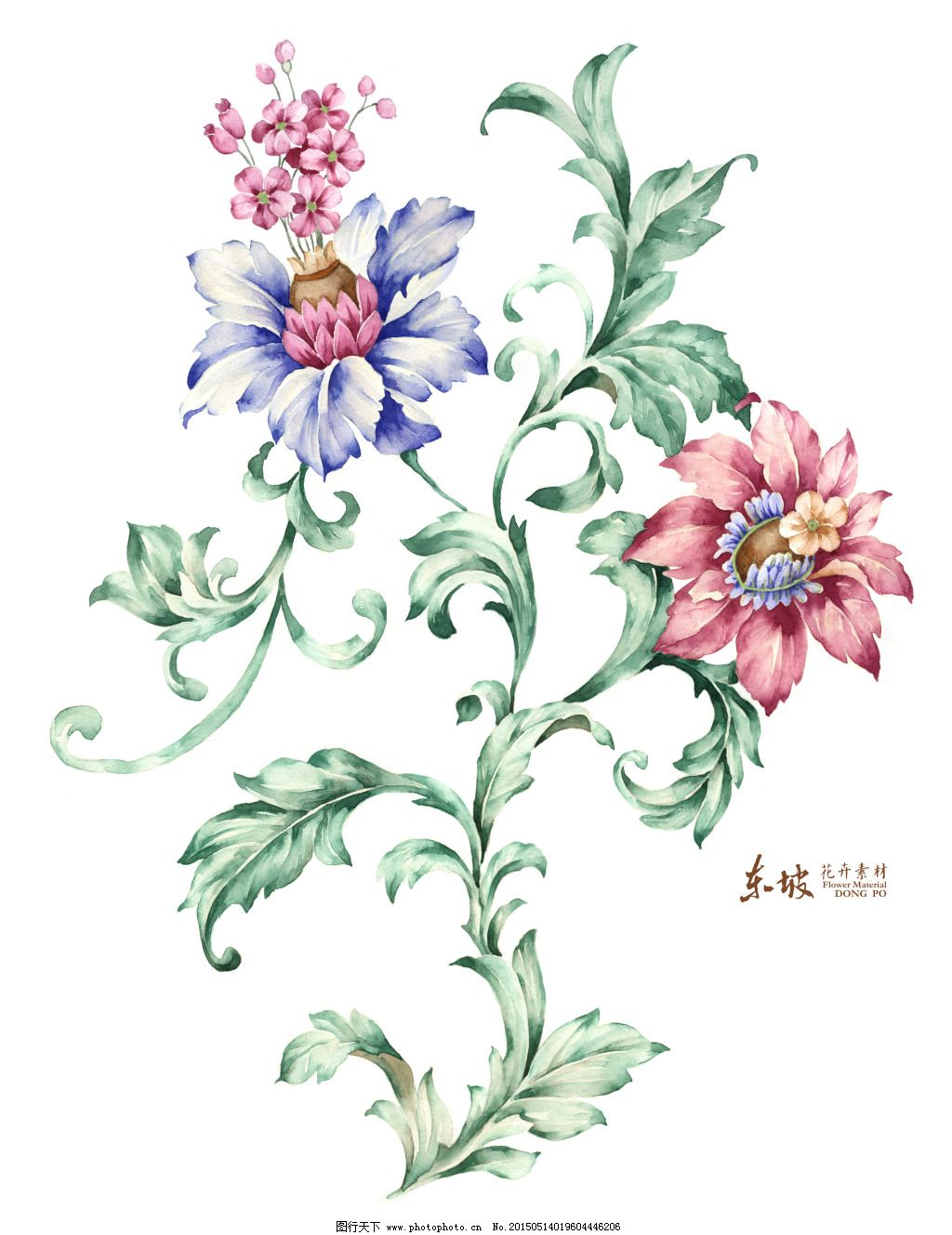 欧式手绘花卉免费下载 创意花卉 创意叶子 高清花卉 欧式花 创意花卉
