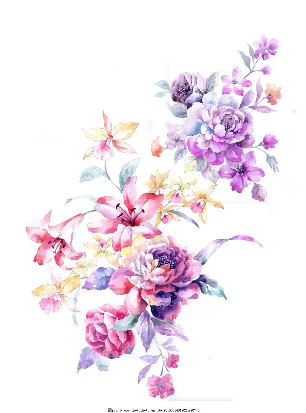 手绘红色花组免费下载 百合花 牡丹花 手绘花 手绘花 百合花 牡丹花