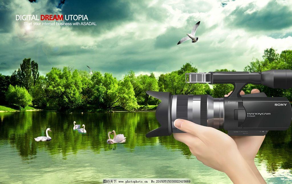 动物世界图片_海报设计