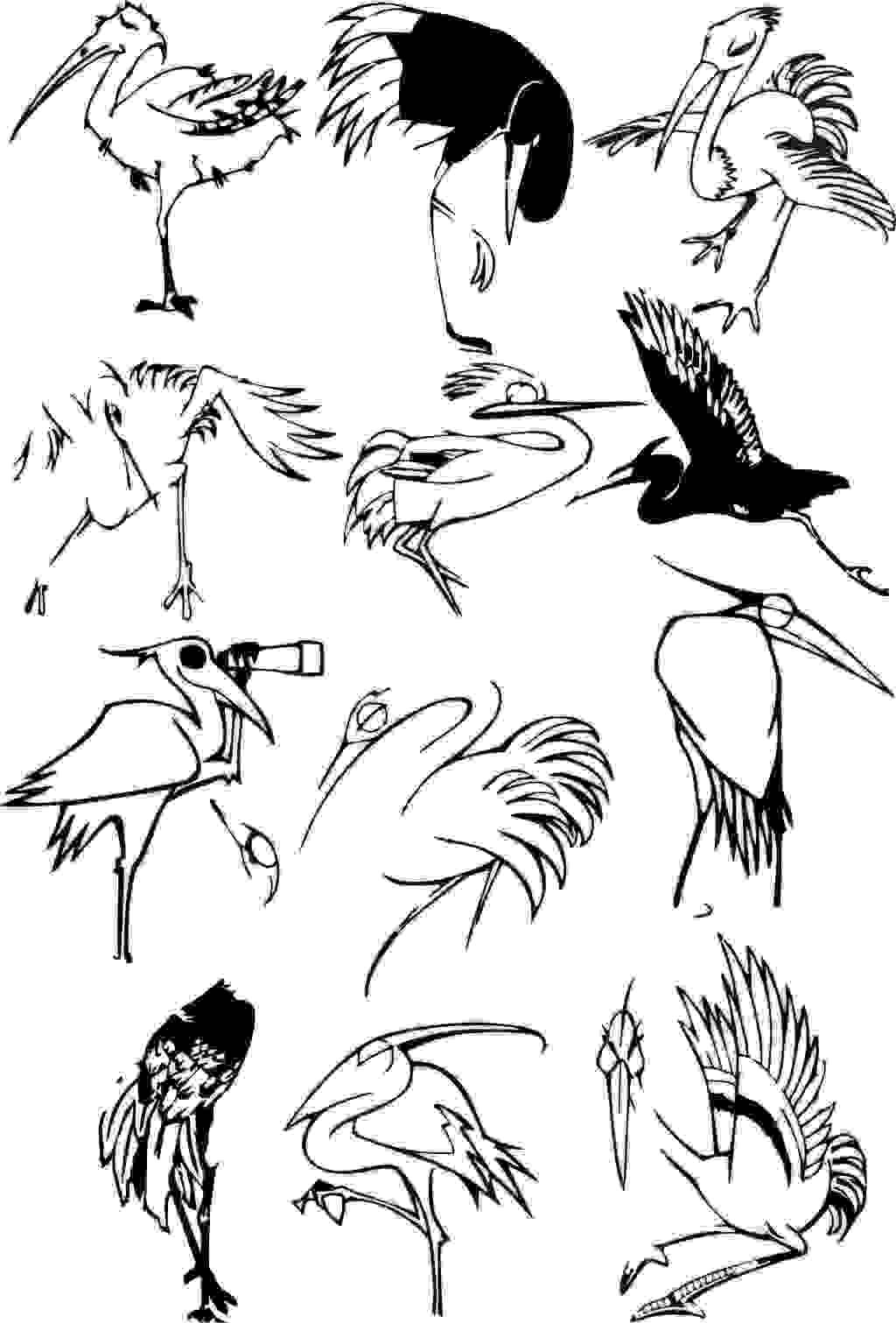 小鸟手绘黑白线稿设计
