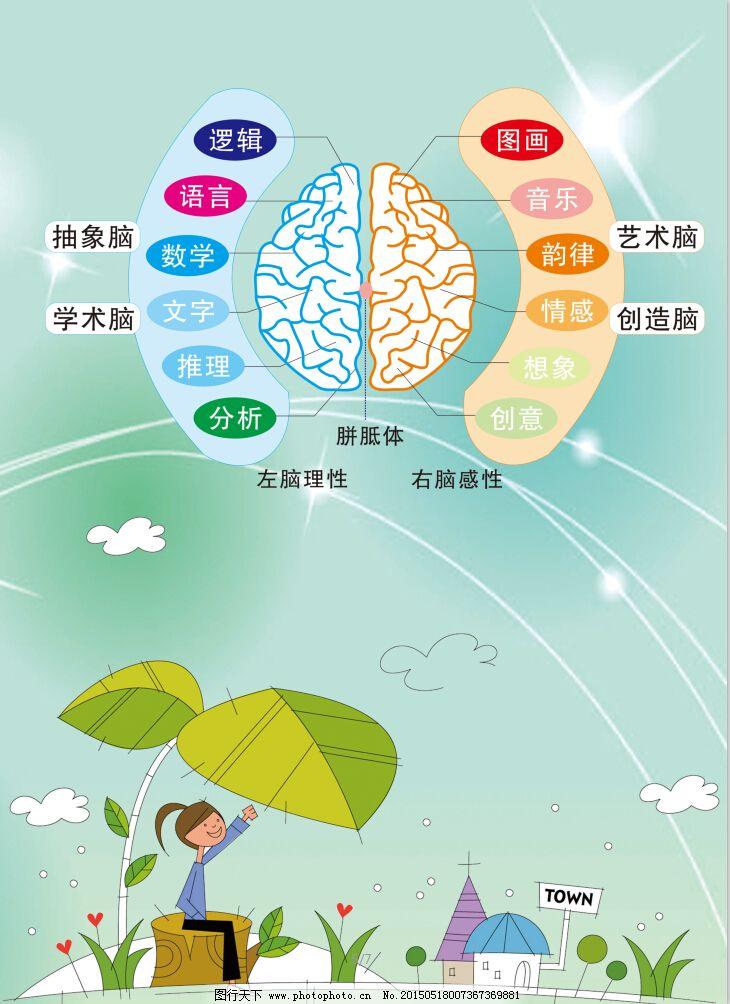 幼儿园海报 卡通 幼儿园海报 大脑用途 卡通背景 其他海报设计