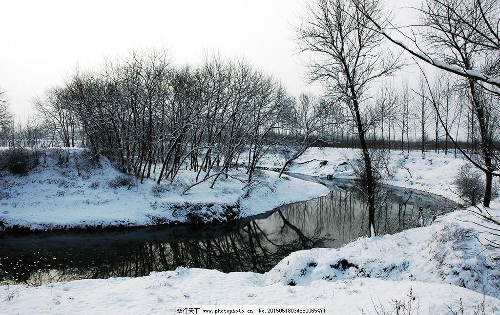 森林公园冬景图片