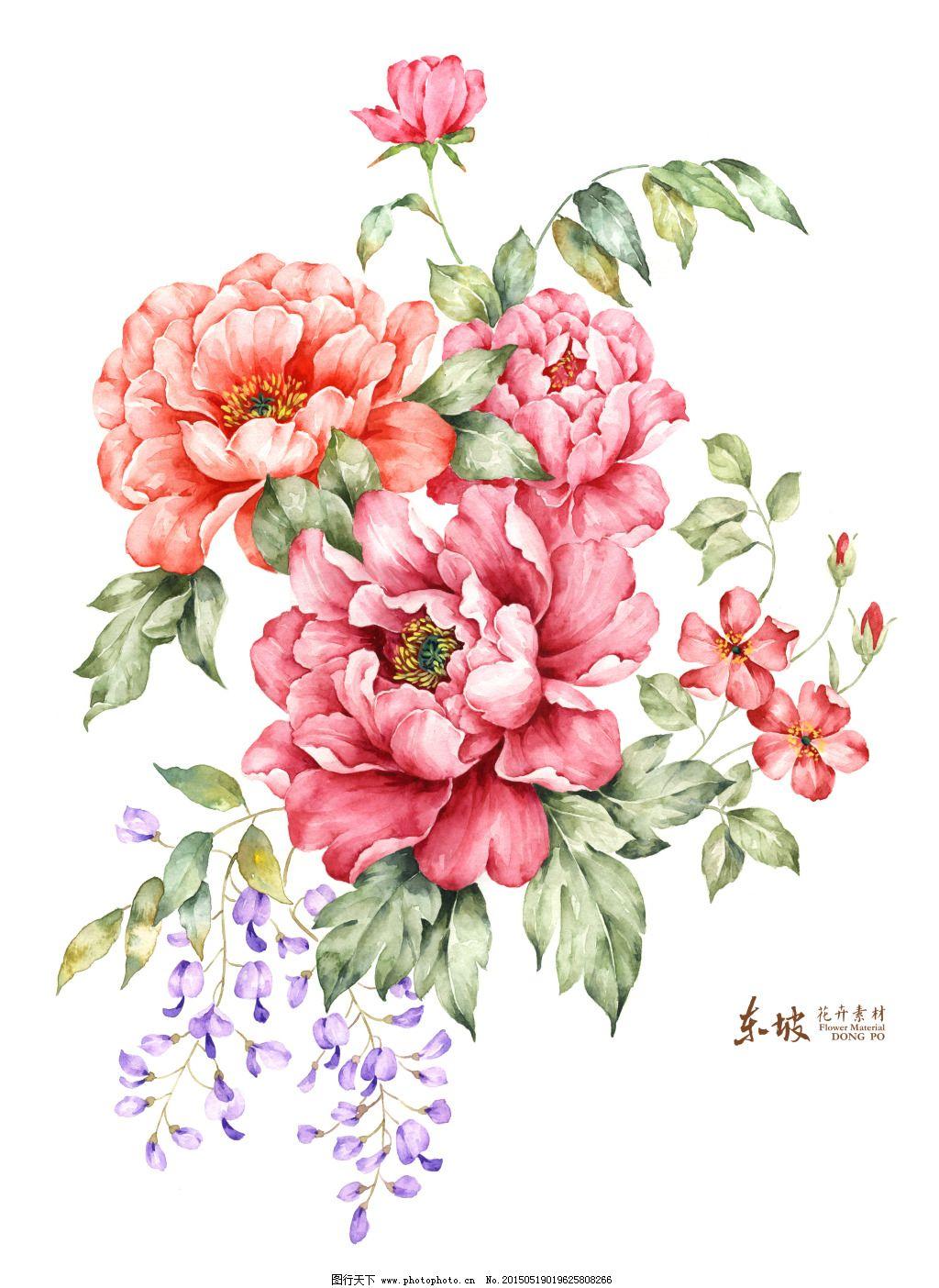 电视背景 牡丹花 手绘花卉 牡丹花 手绘花卉 电视背景 红紫 图片素材