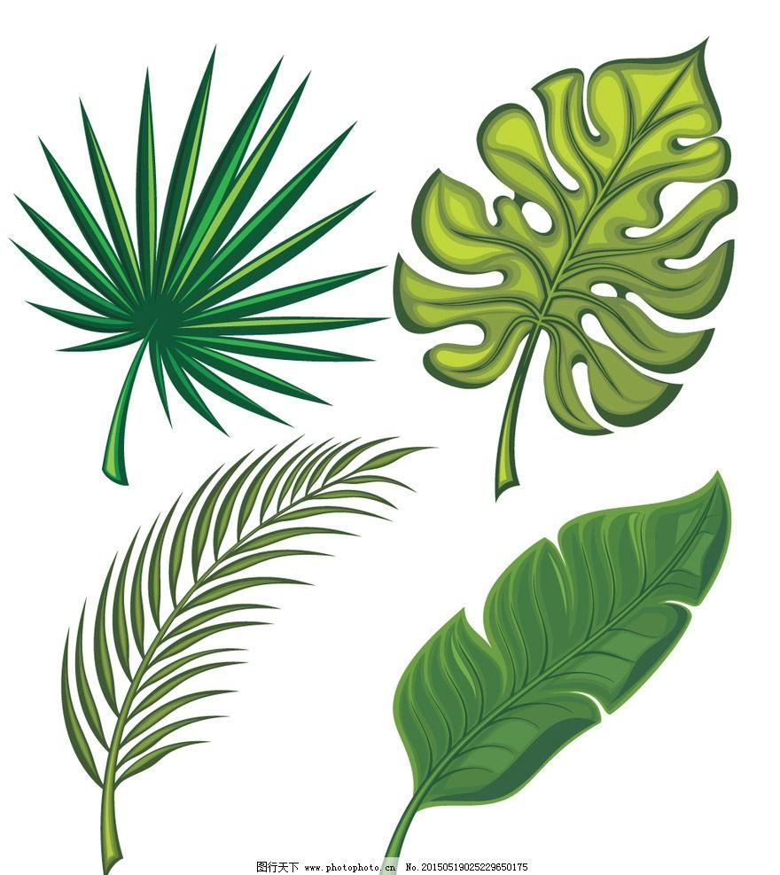 手绘绿叶图片-手绘仙人掌图片|文艺伤感图片|铃兰花图片大全壁纸|铃铛图片