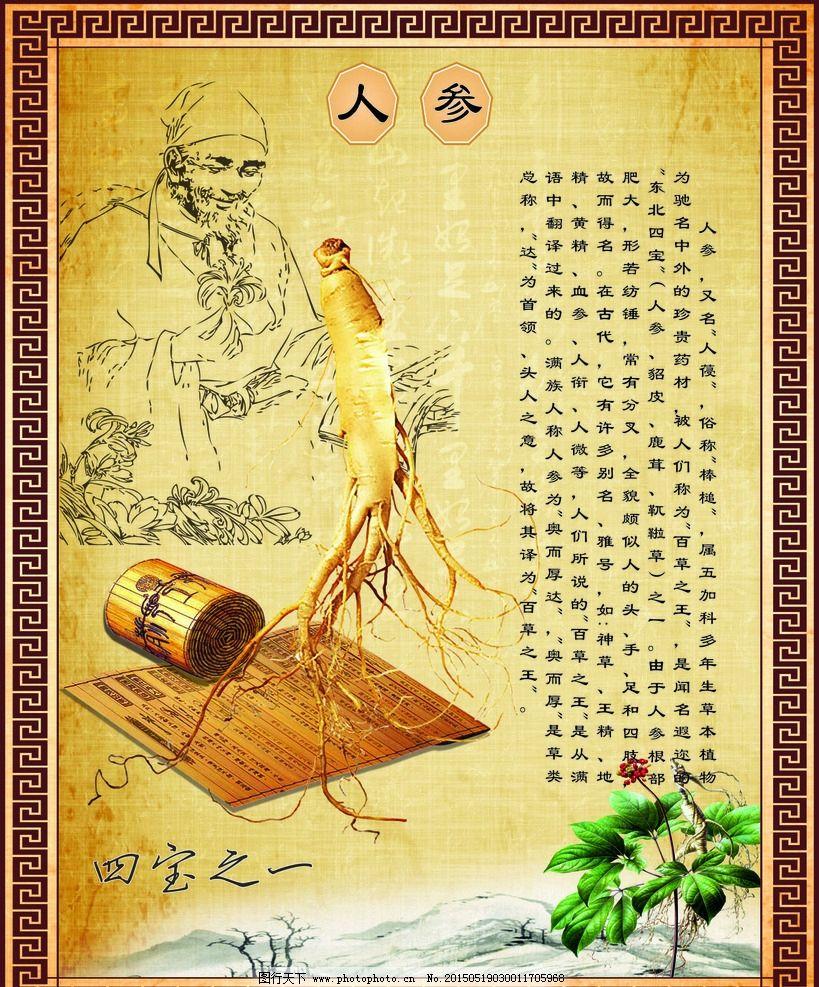 东北山珍四宝之一-野生榛蘑