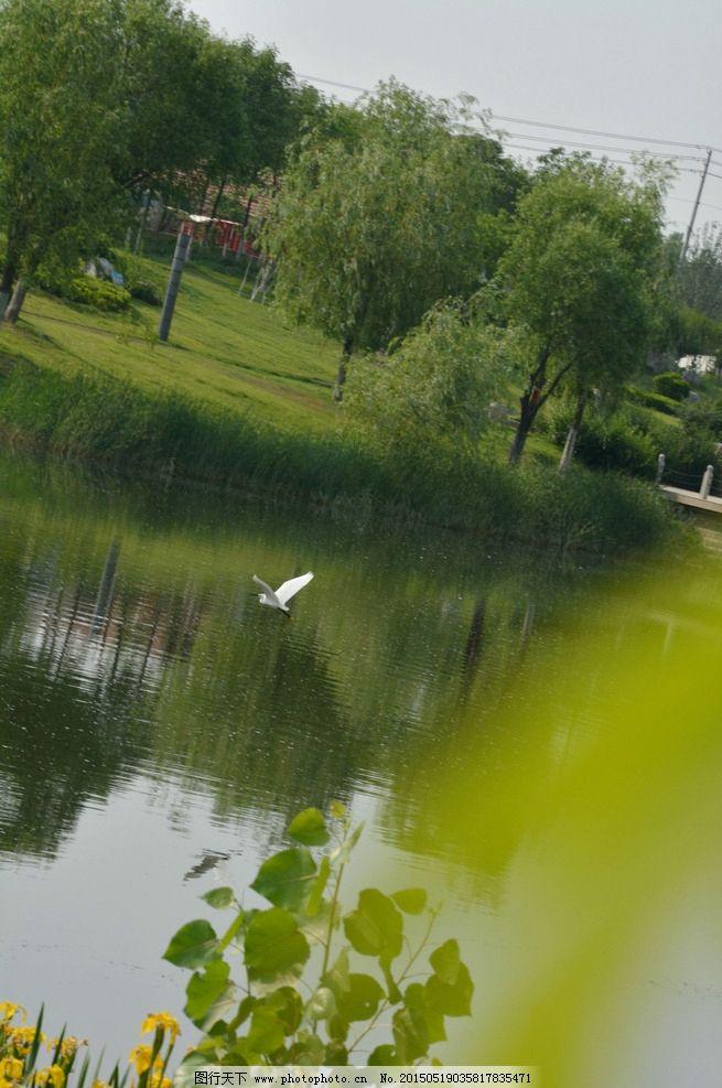 田园风光 山水 唯美 风景 艺术 大自然 春天风光 植物 花草 生物世界