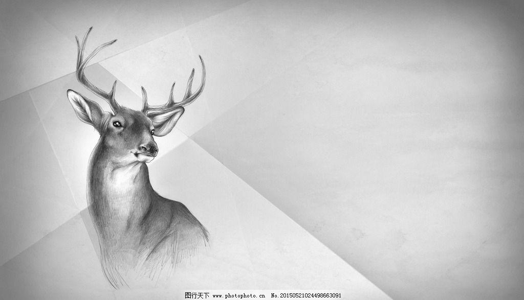 手绘 鹿 动物 灰色背景 简约背景 海报背景 创意素材 淘宝海报素材