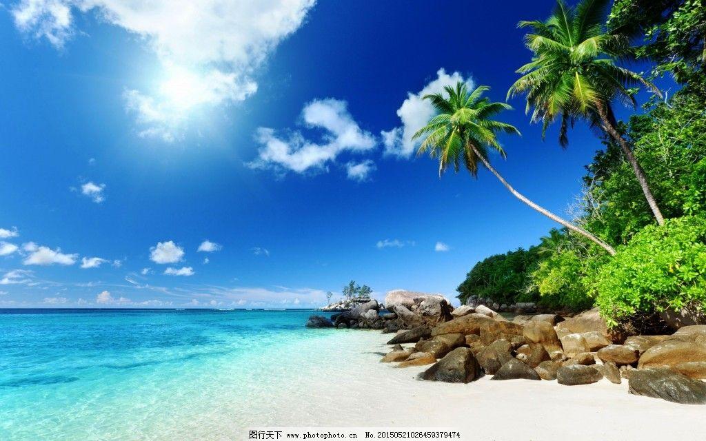 海边 沙滩 石头 椰树 海边 沙滩 椰树 石头 图片素材 风景|生活|旅游